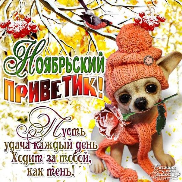 Ноябрьский привет мигающая открытка