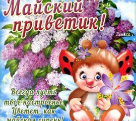 Майский приветик открытка с фразами