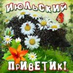Июльские открытки с цветами