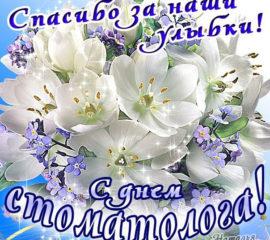 День Стоматолога цветы