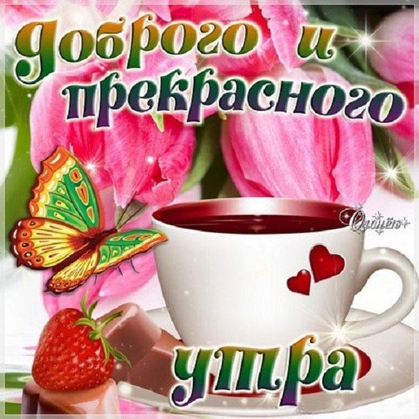 Утро доброе чай цветы к утру
