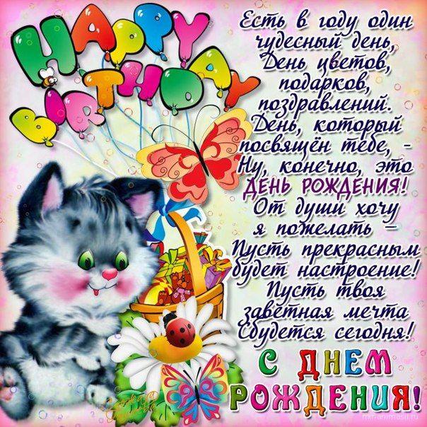 открытка котенок