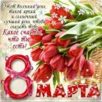 8 марта картинки тюльпаны