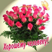 картинки открытки розы